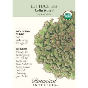 Lettuce Leaf Lolla Rossa Certified Organic Seed: Patio