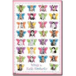 Poster Cat Wings Collage Girls Cute Kitty 6675 Poster Print, 22x34