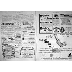 1894 Adverisement Carter Pills Kodak Scrubbs Ammonia