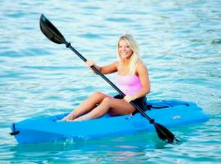 New Lifetime 8 Blue Adult One Seat Sea Kayak + Paddle Backrest Paddle