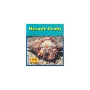 Hermit Crabs (Musty Crusty Animals) (9781588107237): Lola