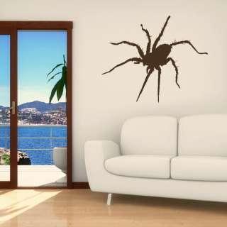 TARANTULA HUGE SPIDER WALL ART DECAL STICKER NEW kids vinyl stencil