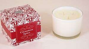 oz Cinnamon Spice Scented 3 Wick Soy Candle by Paddywax Flora & Fauna