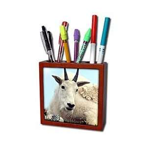 Farm Animals   Alpine Goat   Tile Pen Holders 5 inch tile