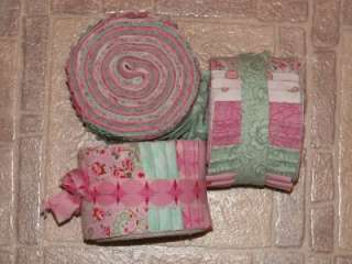 Modern Shabby Style   Mint and Pink Paisley Roses and Tonals Jelly