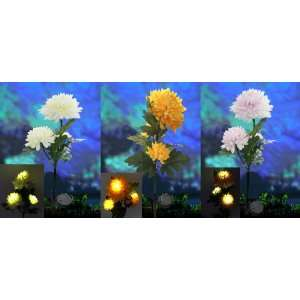 Master Packing with 18 Pcs,assorted 3 Colors, Solar Power 3 LED Light