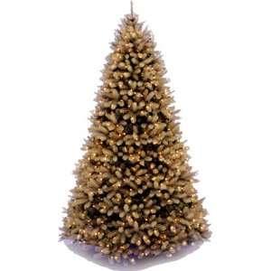 Douglas Medium Fir Christmas Tree with 900 Clear Lights Home