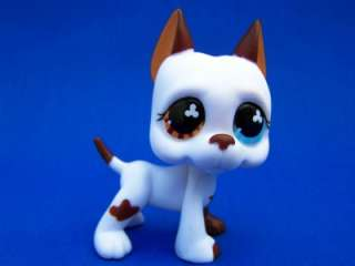 Littlest Pet Shop Lot Brown/White GREAT DANE #577 Super Rare Retired