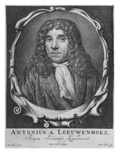 Portrait of Anton Van Leeuwenhoek Giclee Print by Jan Verkolje at