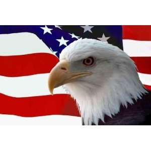 American Bald Eagle on Flag   24W x 16H   Peel and Stick