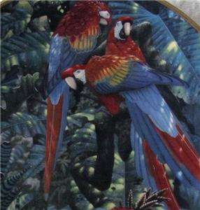 FULL Plates MIRACLES OF RAINFOREST By RICHARD SLOAN,Macaw,Parrots