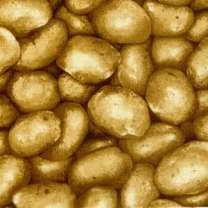 Farmer John Market Potato Potatoes Idaho Paintbrush Studio Novelty