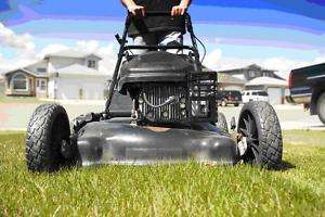 Start a LAWN CARE BUSINESS PLAN SAMPLE Pre START UP KIT