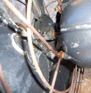 INDUSTRIAL AGE ROBINS & MEYERS ELECTRIC METAL ROTATING FAN MEMPHIS TN