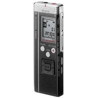 Panasonic RR US570 Digital Voice Recorder (1GB) RR US570 B&H