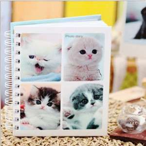 Super Mini Cat Haru Diary Photo Gallery ,Start Anydate