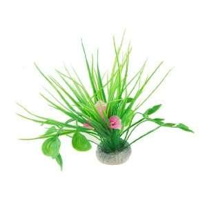 Como Fish Tank White Pink Flower Green Leaf Plant Grass