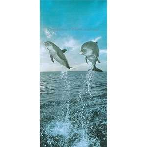Dolphins paradise 8ft x 13ft wall mural environmental graphics for Dolphin paradise wall mural